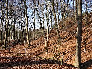Links de wal, in het midden de gracht en rechts de motte van Opladen, anno 2002.