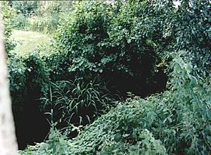 Deel van voormalige gracht rond kasteel Sinderen.