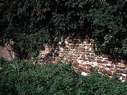 Detail muurwerk van de Schuilenburg, anno 2001.
