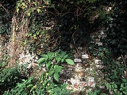 Detail van het muurwerk van de Schuilenburg, anno 2001.